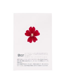 Getrocknete Essblüten der roten Verbene - Neworks