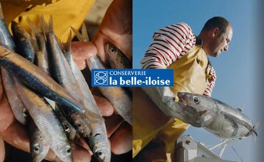Sardinen in Erdnussöl und mit Zitrone - La Belle-Iloise