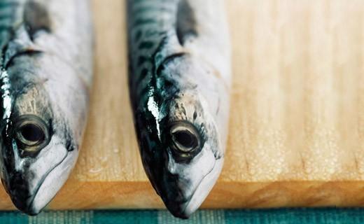 Makrelenstücke nach Escartefigue - La Belle-Iloise